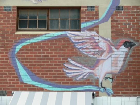 Free bird - Adelaide, SA