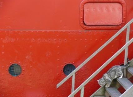 Downstairs Vessel 11 - Rotterdam